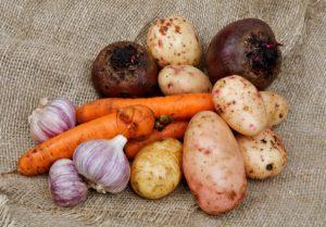 Какие овощи можно хранить