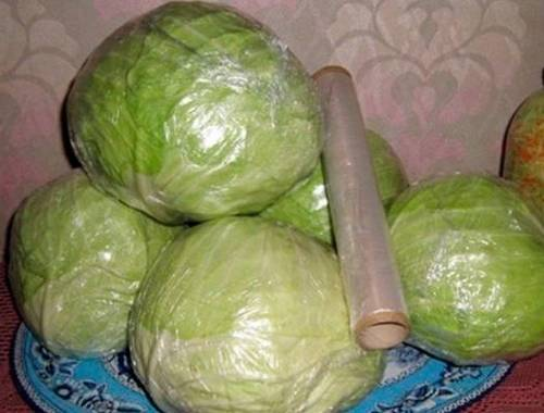 Как хранить капусту в пищевой пленке