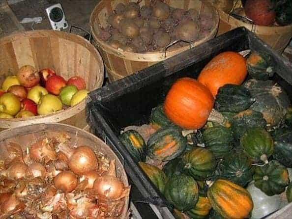 Хранение урожая овощей